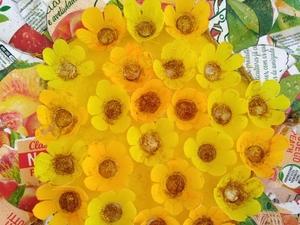 Pormenor do centro da flor.