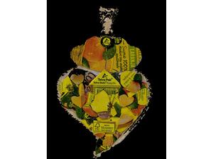 Coração de Viana sustentável