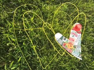 O coração é amarelo - foto 2